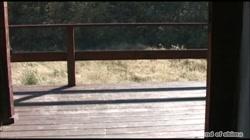 志摩伝説「熟女鞭責め」 - 無料アダルト動画付き(サンプル動画) サンプル画像19
