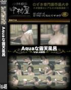Aquaな露天風呂 Vol.485 - 無料アダルト動画付き(サンプル動画)