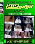 女達の羞恥便所盗撮 Vol.533