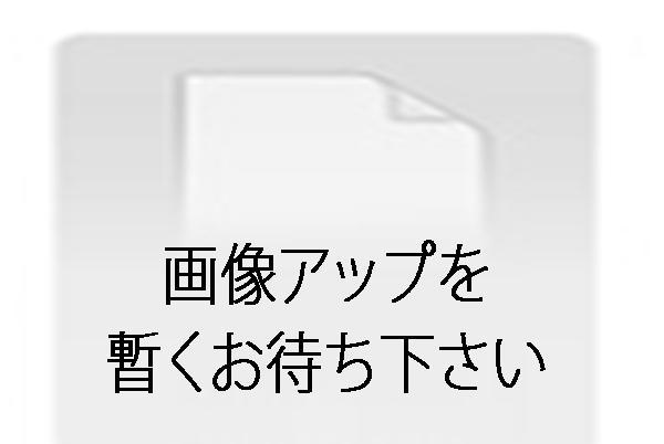トウキョウディーバスペシャル Vol.3