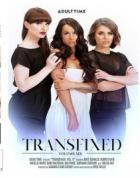 トランスフィックス 6