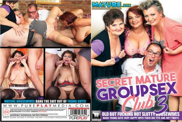 秘密の成熟したグループセックスクラブ3