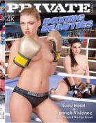 ボクシングの美しさ
