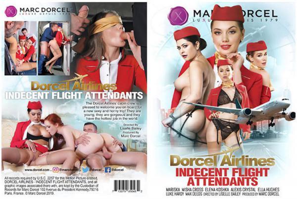 ドーセル航空:わいせつな客室乗務員