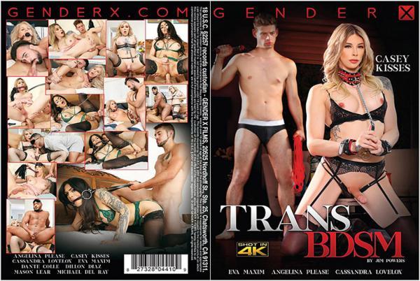 トランス BDSM