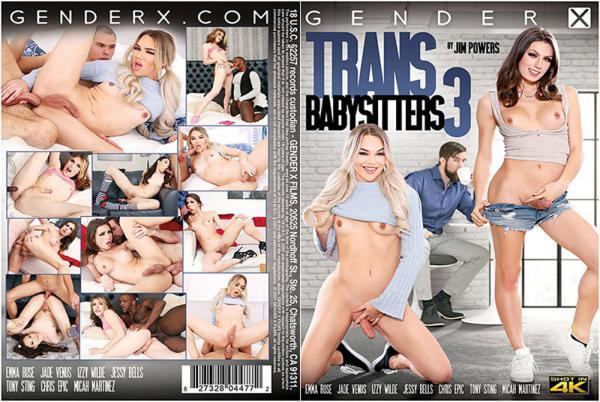 トランスベビーシッター3