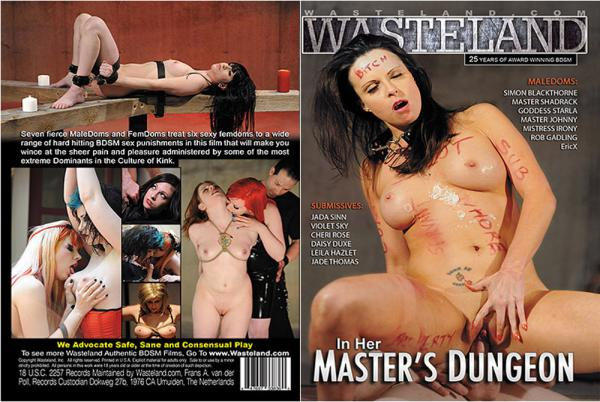 In Her Master's Dungeon