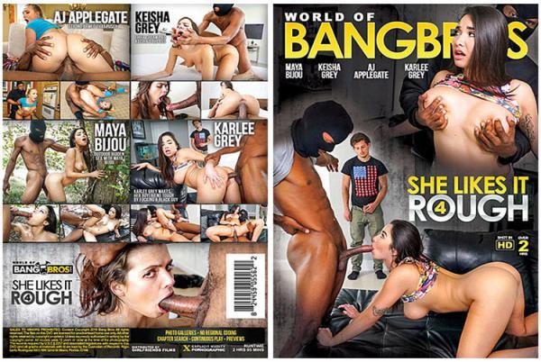 シー ライクス イット ラフ Vol.4 (Bang Bros)