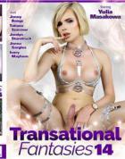 トランセーショナル ファンタジーズ Vol.14