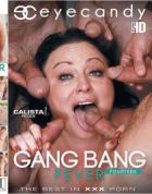 ギャング バング フィーバー Vol.14